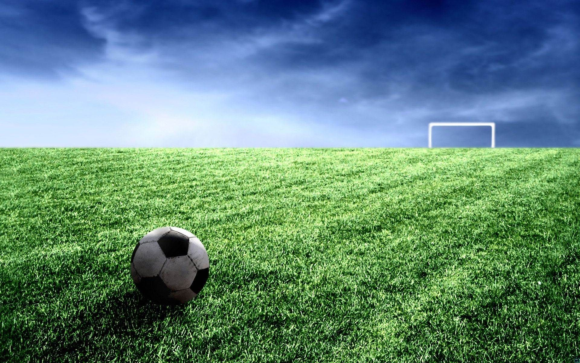 Helpful Suggestions To Search Out Dependable Sports Activities Betting Websites