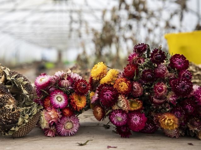 Create Your Own Bouquet of Dried Flowers