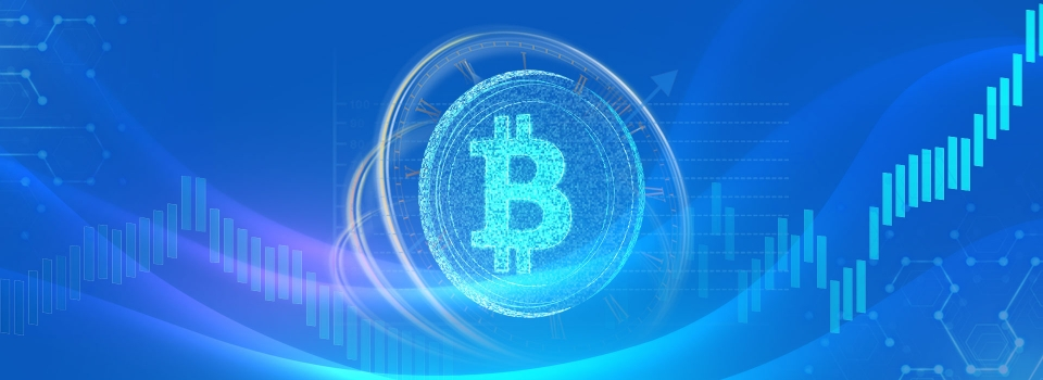 What Is Bitcoin Wallet?